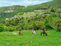Makedonika Tempi - Rihios - Rentina - Villa Riviera - www.villariviera.gr