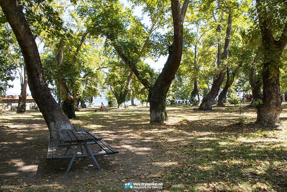 Platania - Stavros - Villa Riviera - www.villariviera.gr